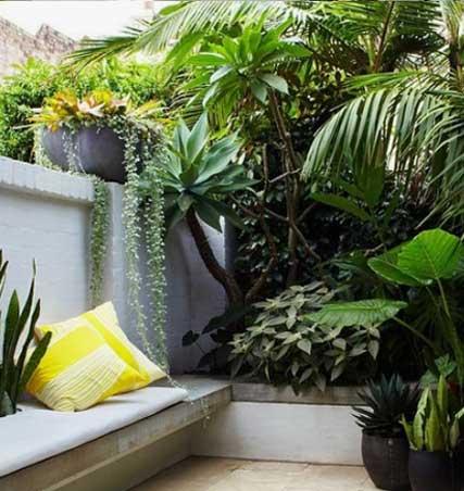 Diseño De Terrazas Con Plantas E Ideas Originales