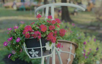 Elementos decorativos para jardín